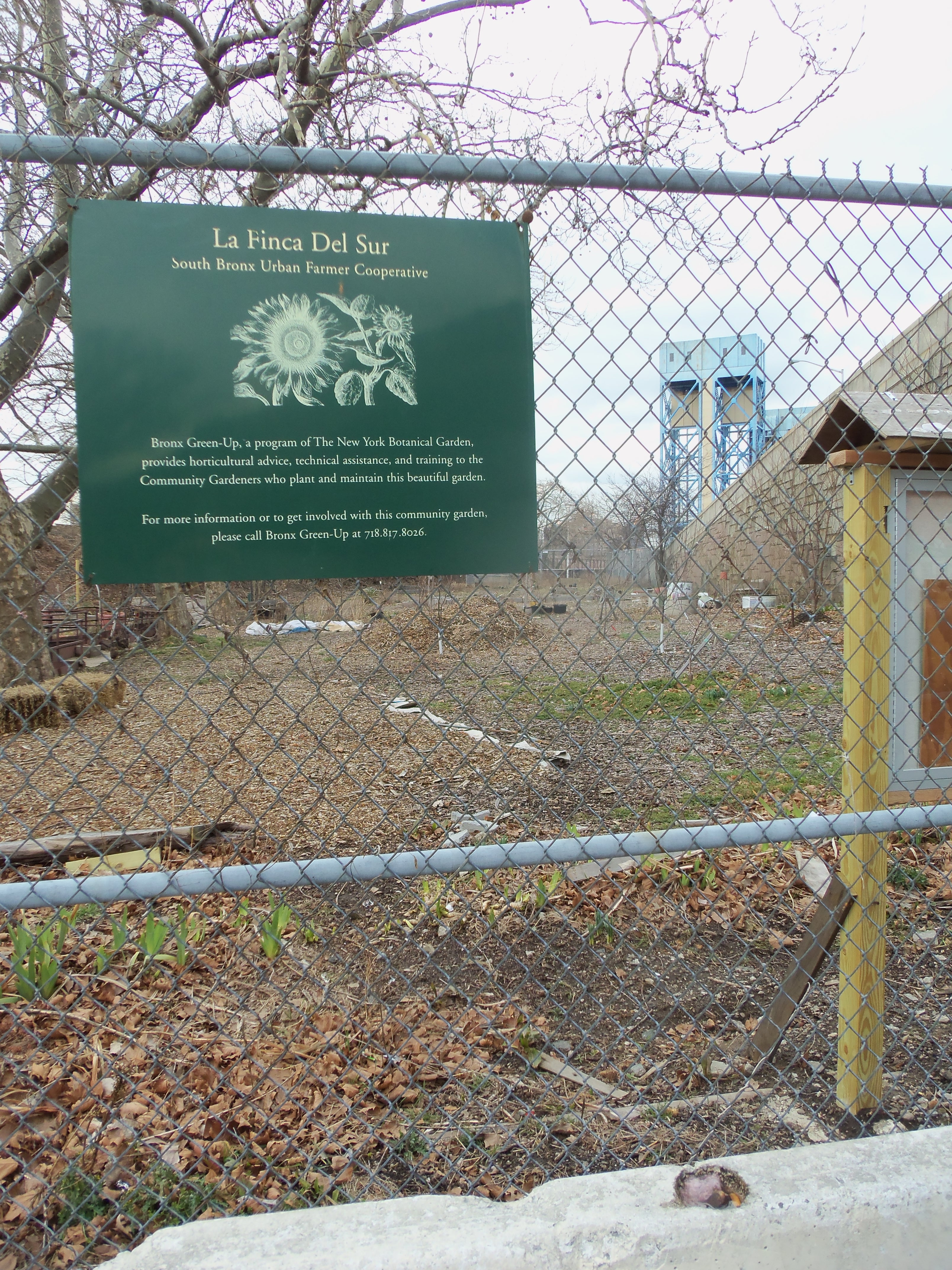 La Finca del Sur, South Bronx community garden