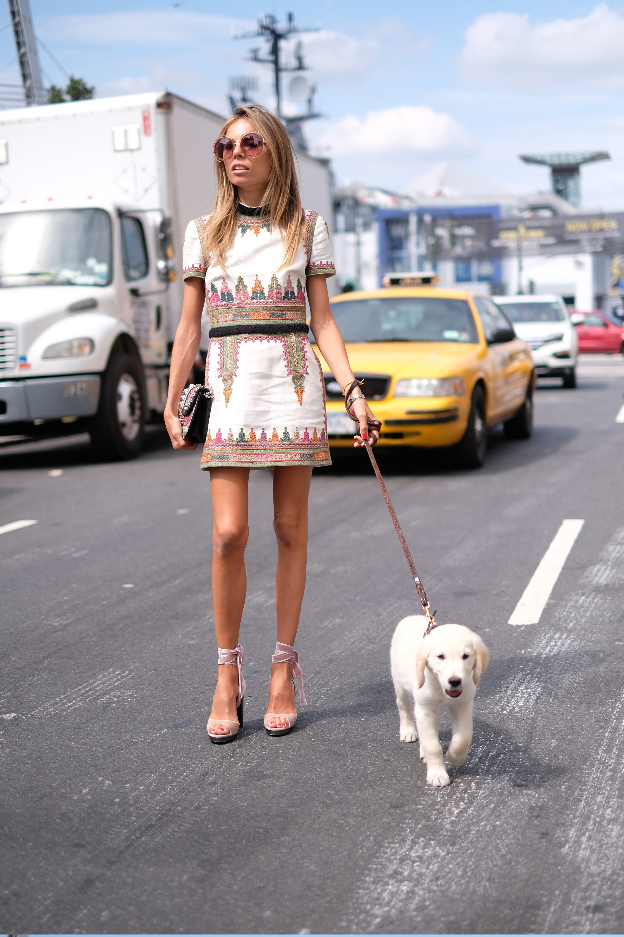 gorgeous fashionista with puppy