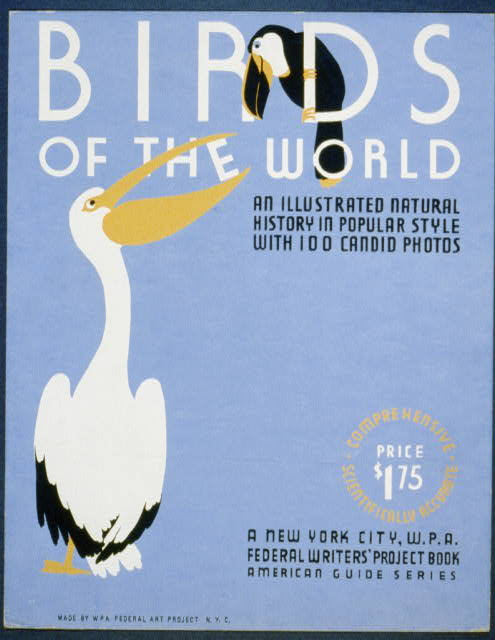 birds of the world an illustrated natural history