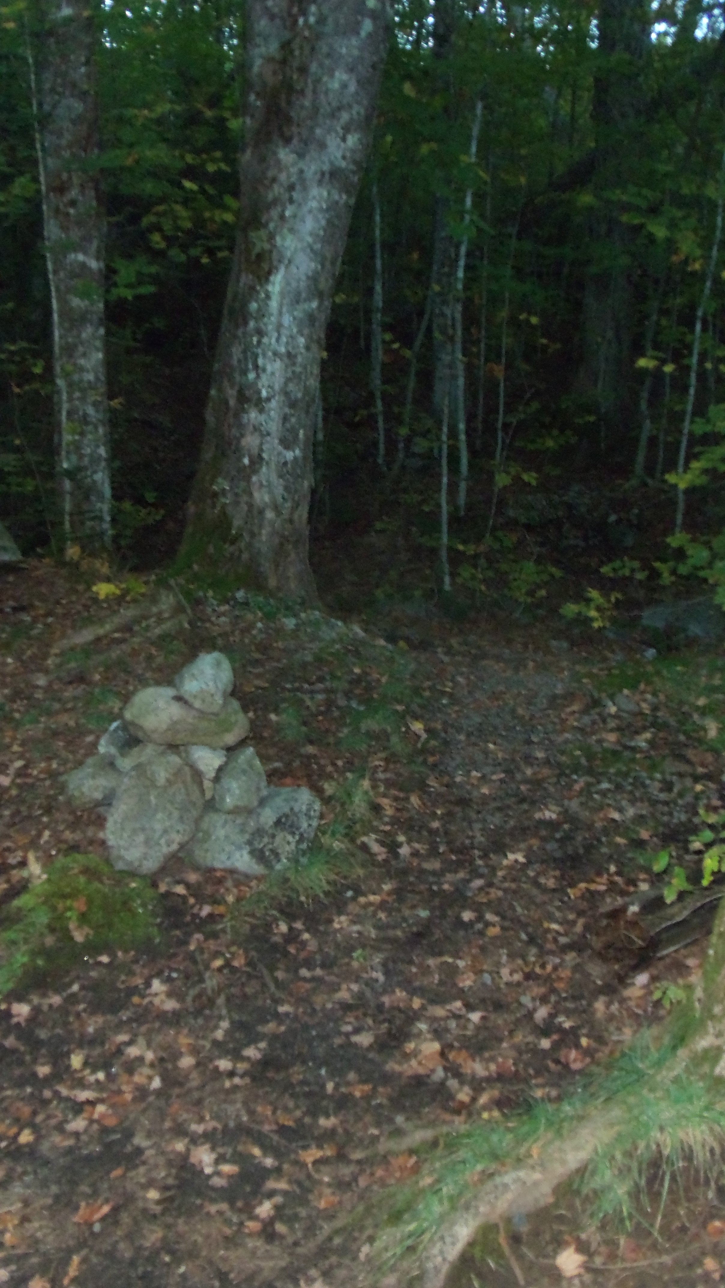 cairn marking Slide Brook herd path to Macomb