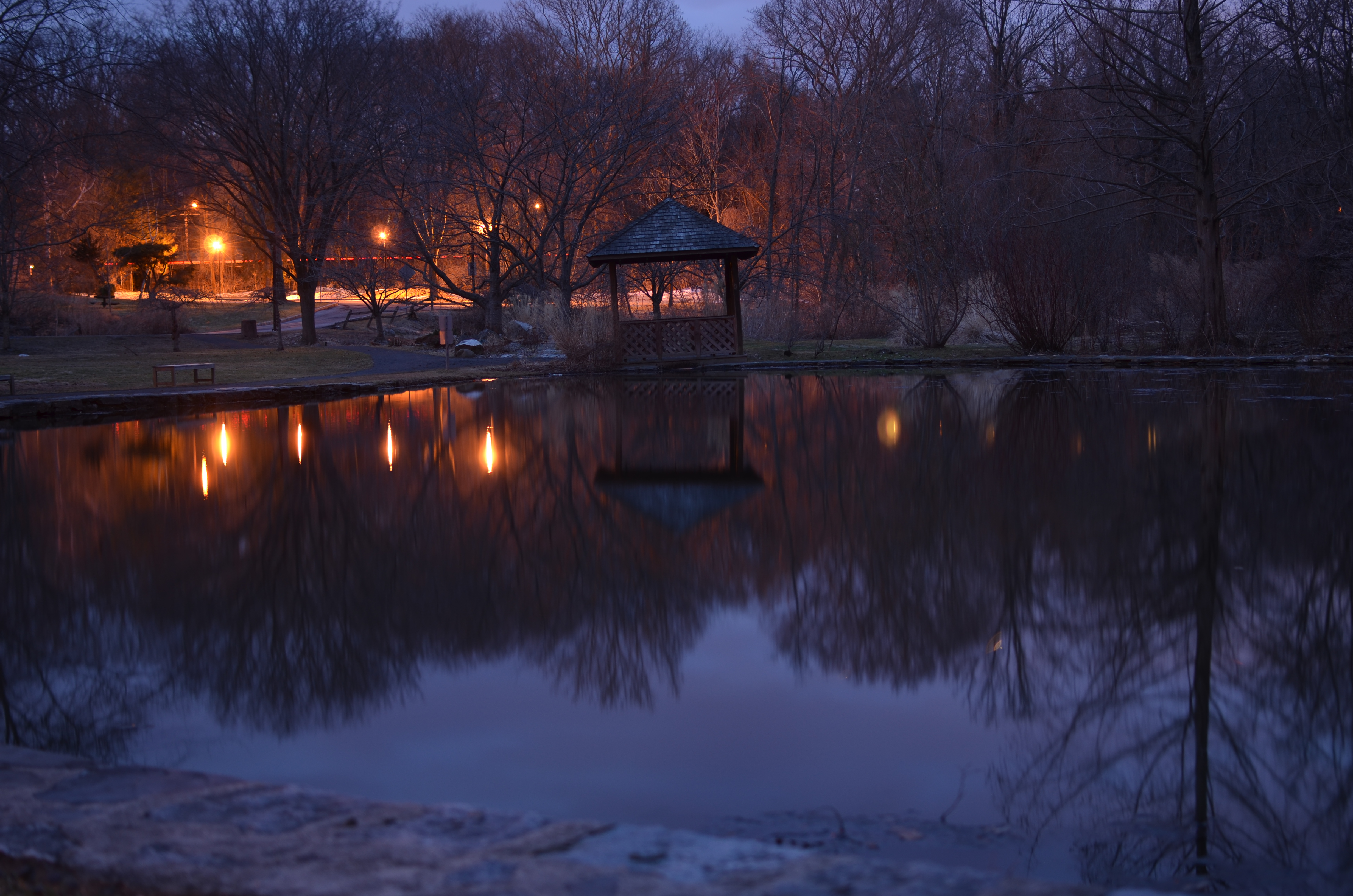 Scarsdale Library Pond