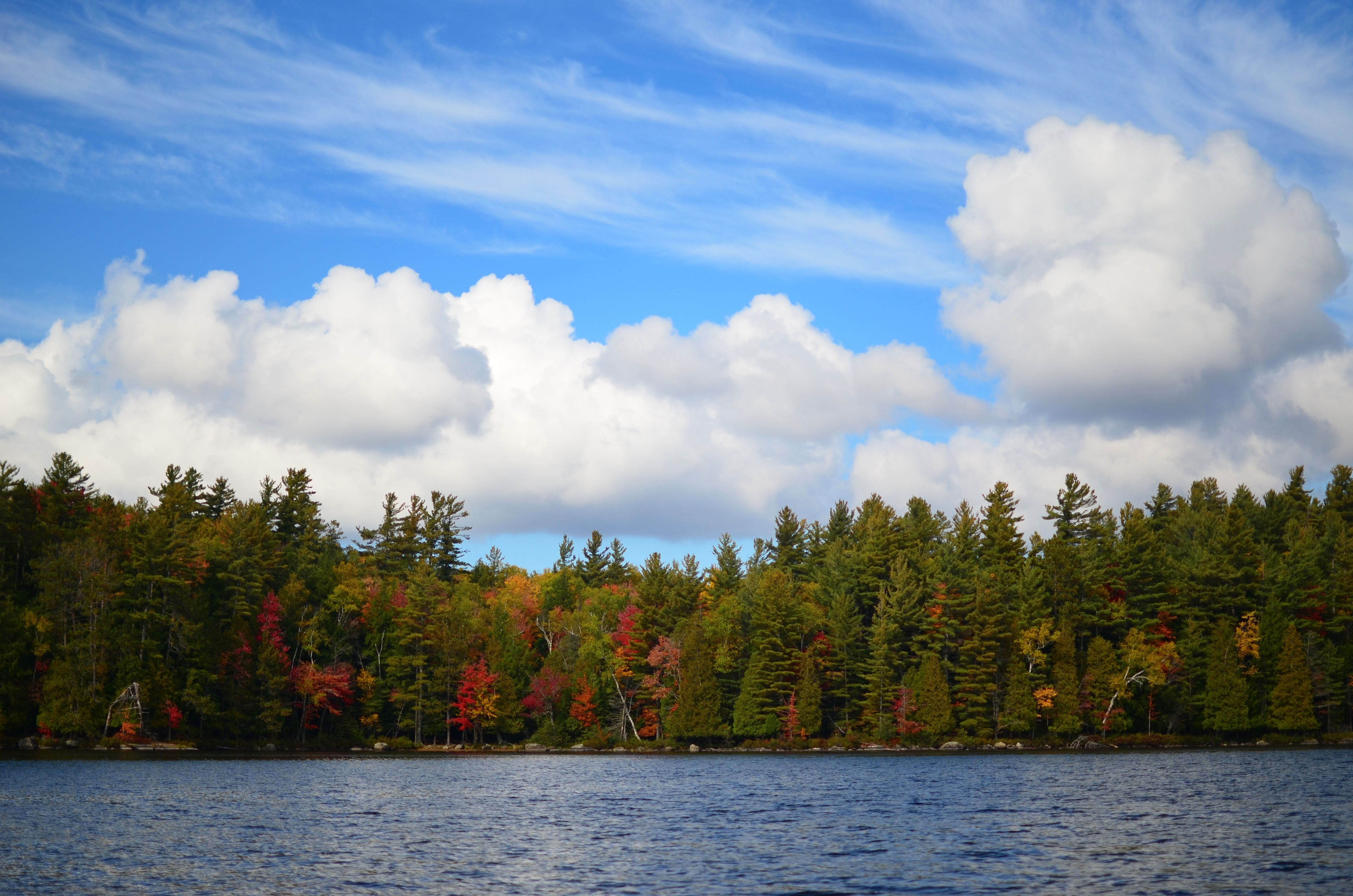 fall colors on lower saranac lake